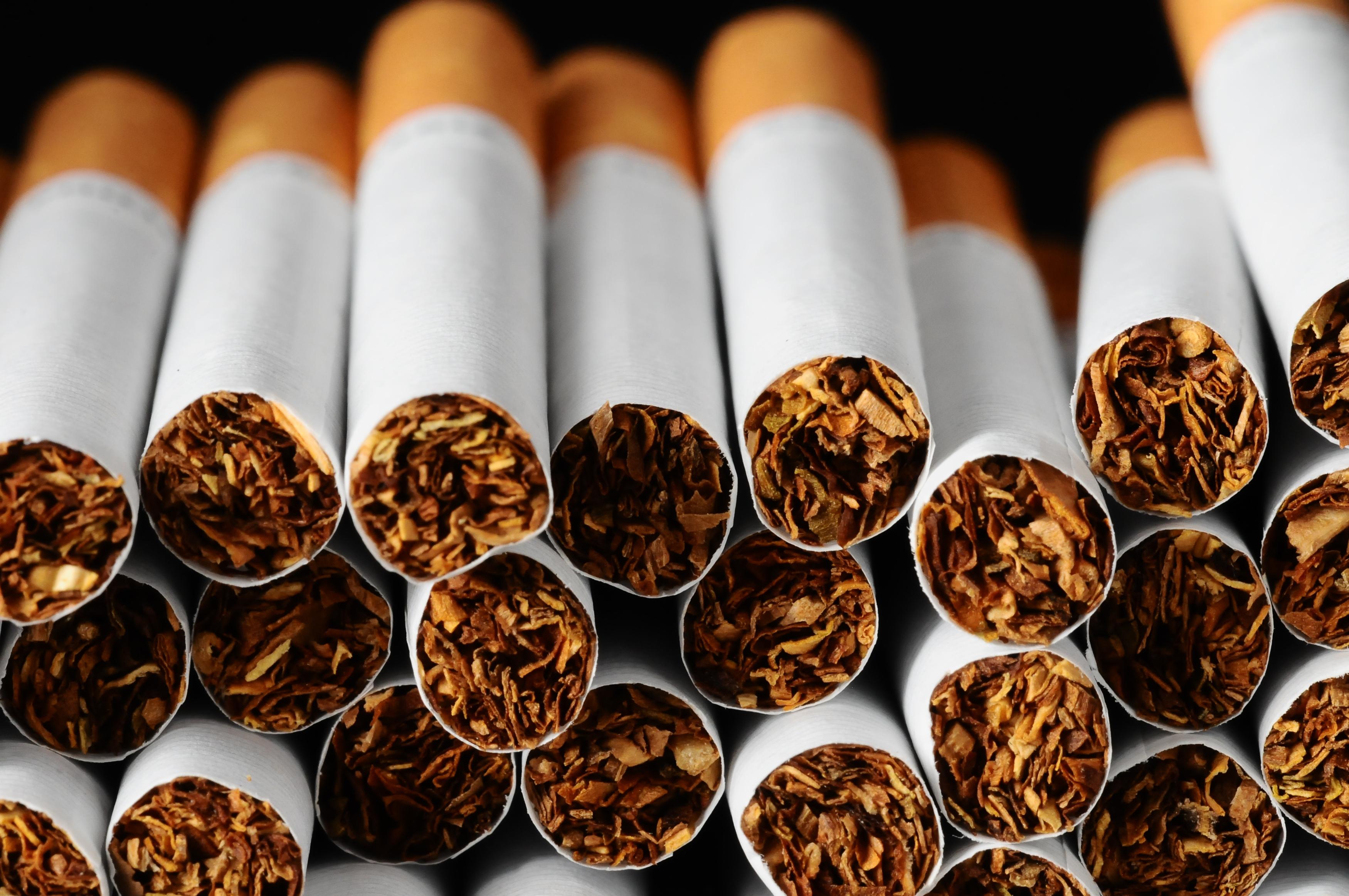 Image result for tobacco