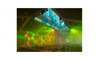 Chauvet Rogues add flair to Florida Performing Arts Center