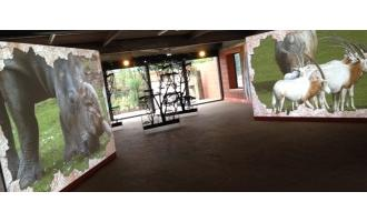 Optoma's projection magic at Marwell Zoo
