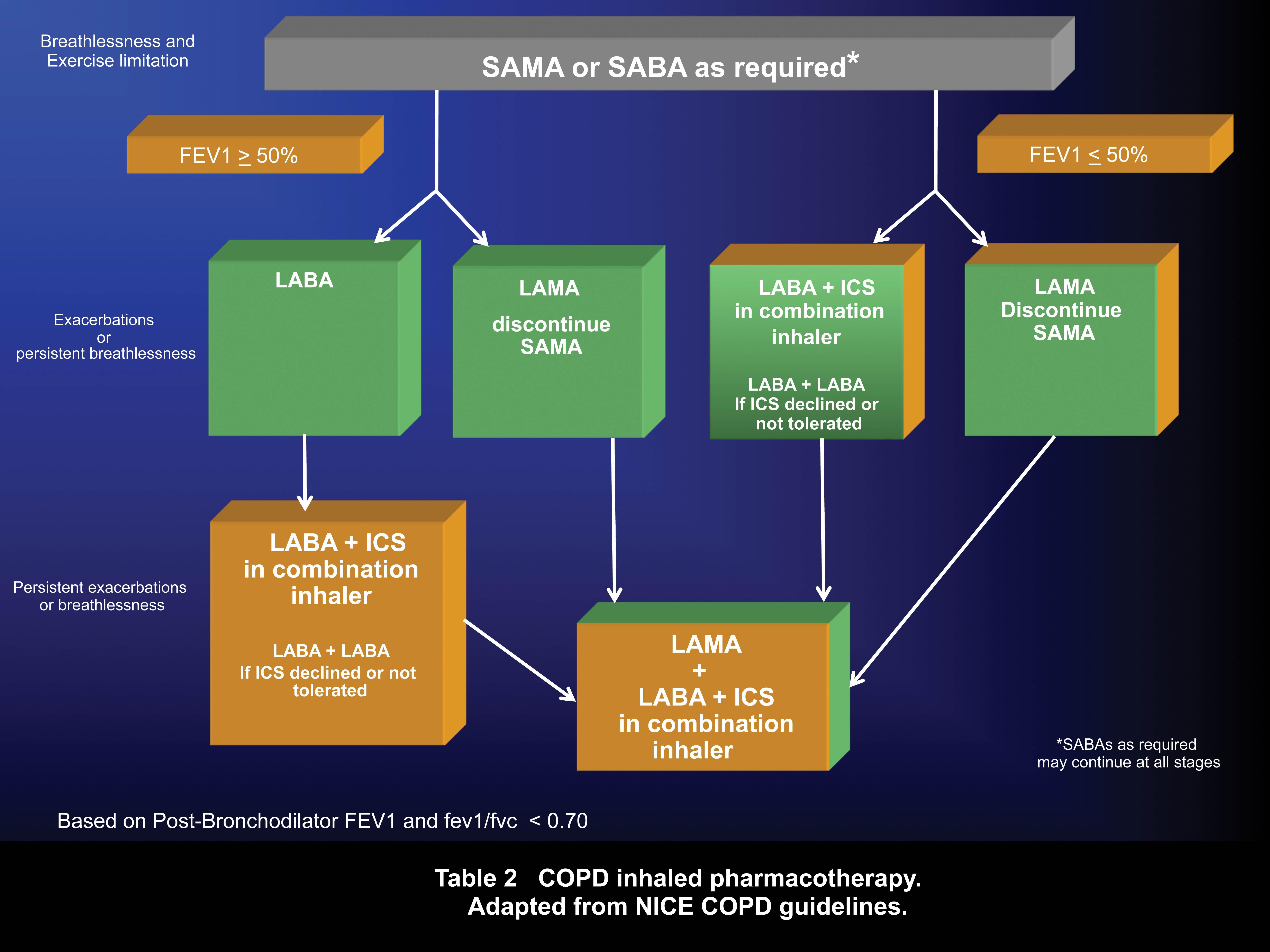 COPD Management Tools