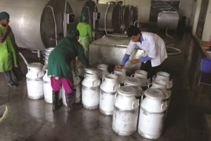 TETRA milk collection in bangladesh