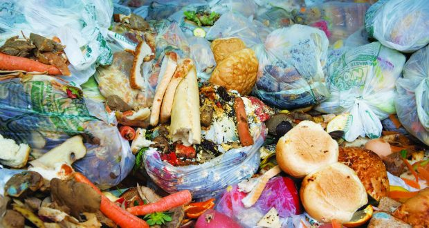 Report claims plastic has limited impact on food waste
